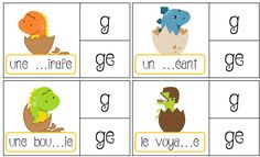 FREE French clip cards for phonics practice Early Learning, Kids Learning, Language Acquisition, Free In French, Prepositions, Learn French, Phonics, Literacy, Sons