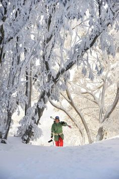 Snow Australia - Mt Buller ski resort in Victoria #snowaus