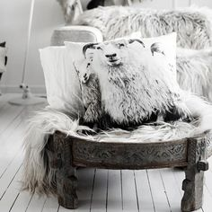sheep cushions and shaggy rugs, white floor and vintage coffee table