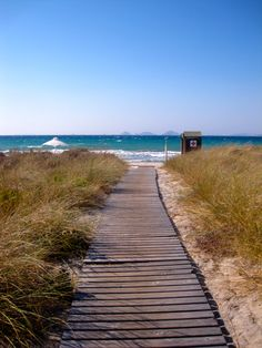 Beach - Path - Kos - Greece