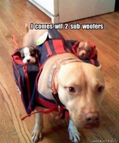 sub woofers. i has them