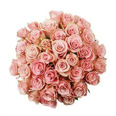 5ac6d0be35f12 Light pink roses Sams Club Flowers