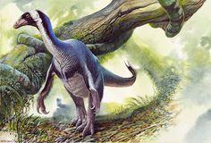 Beipiaosaurus546.jpg (500×340)