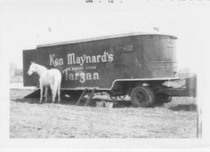 Ken Maynard's wonder horse Tarzan