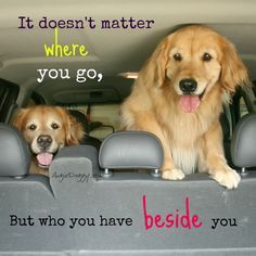 It doesn't matter where you go, but who you have beside you