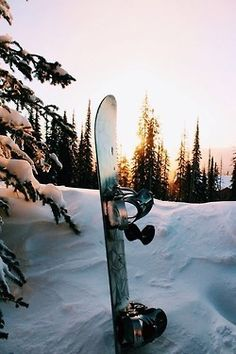 ||THANKS||'s snowboard images from the web