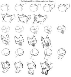 Canine heads step-by-step by TheShadowedGrim on DeviantArt Animal Sketches, Art Drawings Sketches, Animal Drawings, Wolf Drawings, Drawing Animals, Dog Drawing Tutorial, Wolf Sketch, Wolf Artwork, Drawing Expressions