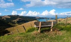 Beautiful, blissed-out, bohemian: this island a short ferry ride from Auckland lures artists, wine-lovers, foodies and free spirits Waiheke Island, New Zealand Travel, Auckland, Long Island, The Guardian, Where To Go, Travel Inspiration, Places To Go, Country Roads
