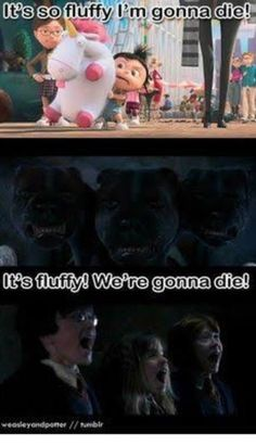 watch the first harry potter and youll get the humor in it Mundo Harry Potter, Harry Potter Jokes, Harry Potter Pictures, Harry Potter Fandom, Harry Potter World, Hogwarts, Slytherin, Movies Quotes, Desenhos Harry Potter