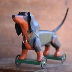 The Dachshund Pul Dachshund Breed Weiner Dog Clever Dog
