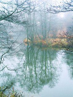 November mist. Photo: Åse Margrethe Hansen