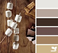 colors Forgie Home Staging & Redesign