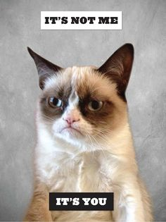 Grumpy Cat is Coming. (You've Been Warned.)