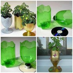 Plastic-Bottle-And-CD-Into-Planter1