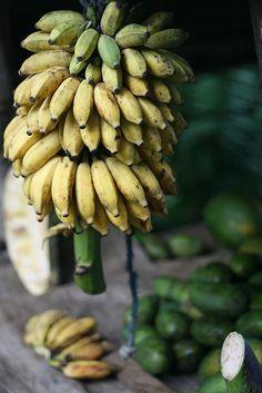 Sun fresh sweet and tasty bananas Thai Recipes, Raw Food Recipes, Healthy Recipes, Exotic Fruit, Tropical Fruits, Bananas, Beautiful Fruits, Delicious Fruit, Edible Art