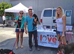 Thanks Justin Silver from Dogs In The City for coming by our Sunday mobile adoption in Santa Monica!