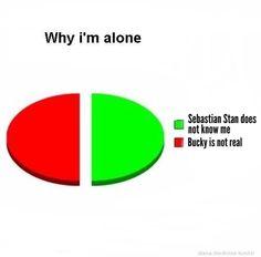 Why I'm alone Sebastian Stan