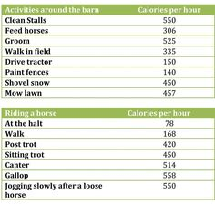 Equine Activities - Calories Burned