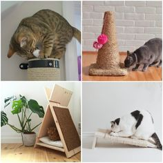 Cats The Musical Iphone 7 Plus Tumblr, Cat Garden, Cat Wallpaper, Cat Furniture, Cat Tattoo, Diy Stuffed Animals, Pet Shop, Crazy Cats, Cats And Kittens