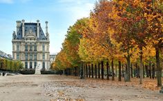 Read our guide to the best things to do on a short break in Paris, as…