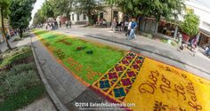 La Alfombra más Larga del Mundo l Sólo lo mejor de Guatemala _ The longest carpet ever made in the world l Only the best of Guatemala