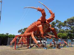AUSTRALIE DU SUD - Kingston - Larry la langouste Kingston, Larry, Ferris Wheel, Fair Grounds, Travel, Australia, Voyage, Viajes, Traveling