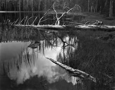 Siesta Lake by Ansel Adams