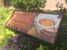 One of the interpretive panels in the garden.