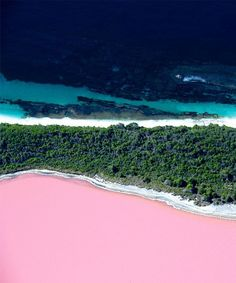 Lake Hillier Amazing Pink Lake in Australia Lake Hillier Australia, Pink Lake Australia, Coast Australia, Australia Travel, Western Australia, Sydney Australia, Lago Retba, Great Barrier Reef, Ubud