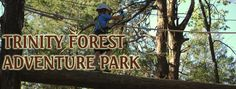 Trinity Forest Aerial Adventure Park- bucket list for this year