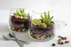 Make an (Edible!) Terrarium. Etsy.com handmade and vintage goods