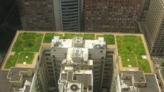 The green web was buzzing in 2001 when a rooftop garden appeared atop Chicago City Hall to curb what is termed the 'urban heat island effect', cooling the building while using less energy. Irrigation, Urban Heat Island, Cool Roof, Chicago City, Chicago Illinois, Green Architecture, Contemporary Architecture, Roof Design, Lush Green