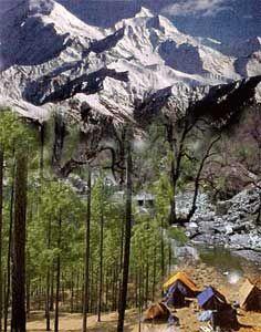 Milam Glacier - Indian Wildlife Club Ezine - October, 2003