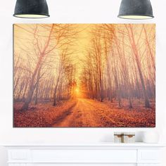 Forest Road into Sunrise - Landscape Photography Glossy Metal Wall Art