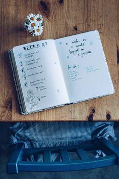Bullet Journal vecka 27 - reaktionista.se Ptsd, Trauma, Bullet Journal