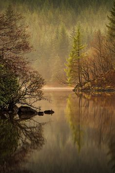 Loch Ard Misty, Scotland – Amazing Pictures - Amazing Travel Pictures with Maps for All Around the World Beautiful World, Beautiful Places, Beautiful Pictures, Crazy Pictures, Jolie Photo, Perfect World, Landscape Photographers, Amazing Nature, Science Nature