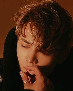 161118 Highcut site update - with #Minho #Shinee