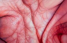 Who: Edie Nadelhaft What: Palm Diptych, Oil on Canvas, 54 x 72 in, Why: I really love the use of colour in this photo to create a piece that is both abstract and photo-realistic, with the palm textures high in detail. Skin Mapping, Close Up Art, Art Alevel, Extreme Close Up, Close Up Photography, Hand Photography, Photography Ideas, A Level Art, Gcse Art