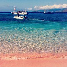 Pink Beach in Komodo island, Nusa Tenggara Timur