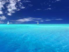 Denizlere rengini veren nedir?