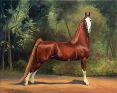 American Saddlebred Marcel Marceau (attaché x Circus Wonder) by Jeanne Newton Schoborg