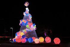 Colorful modern Christmas trees with light balls