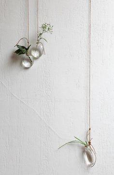 Hanging Vases strung on white. | Image via: Remodelista