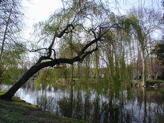Parc des Capucins à Coulommiers - 2002