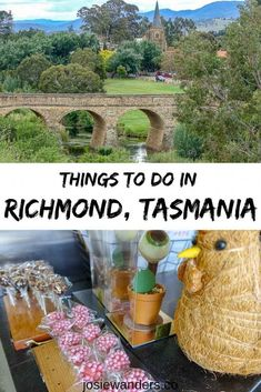 Looking for day trips from Hobart? Take a trip from Hobart to Richmond, Tasmania to see the oldest bridge in Australia, wineries near Hobart, & more. Mona Tasmania, Stanley Tasmania, Tasmania Hobart, Moving To Australia, Visit Australia, Australia Travel, Hobart Australia, Tasmania Road Trip, Travel