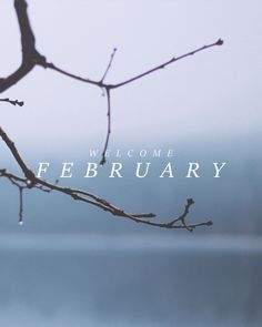 Hello February. Please be good to us! Made w/ @PicLab_HD