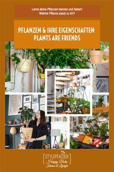 Finde die perfekten Pflanzen für deinen Typ und dein Zuhause. Ist es bei dir hell oder dunkel, fährst du oft in Urlaub, hast du Erfahrung mit Zimmerpflanzen oder bist du Einsteiger in den Urban Jungle? Mit diesen Tipps schaffts auch du dir ein grünes Zuhause, das genau zu dir passt! [unbezahlte werbung] #zimmerpflanzen #pflanzenpflege #grünerdaumen #greenthumb #plantlover #pflanzentipps #planttips Urban Lifestyle, Lifestyle Blog, Projects, Home, Exotic Beauties, Find Friends, Potsdam, Dark, Indoor House Plants