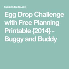 Egg Drop Challenge with Free Planning Printable {2014} - Buggy and Buddy