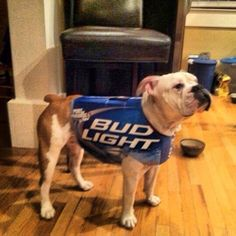 As another Saturday night grows near, I trust my faithful companion to guard and protect me. He's my hero. My Bud Light Buddy.  http://www.i-am-bored.com/