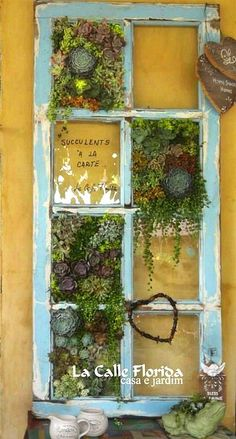 Indoor And Outdoor Succulent Garden Ideas Succulents And Old Windows.Succulents And Old Windows. Garden Types, Diy Garden, Lush Garden, Garden Projects, Garden Art, Upcycled Garden, Cacti Garden, Succulents In Containers, Container Plants